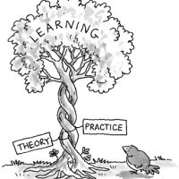 The Theory and Practice Divide